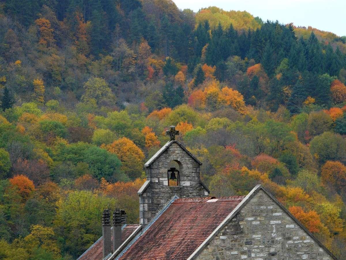 L'automne est synonyme de forêts aux couleurs flamboyantes. Ces paysages se montreront très bientôt puisque l'automne commence cette année le 22 septembre. © Jean-Baptiste Feldmann