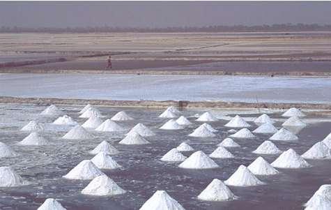 Sénégal : Récolte du sel dans les marais salants de Fatik. IRD - Barrière, Olivier