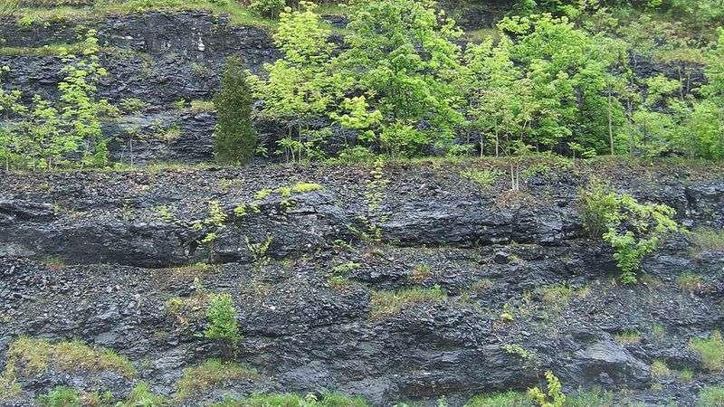 Une formation schisteuse aux États-Unis. La couche de schistes s'enfonce en profondeur, et fait l'objet depuis des années d'une exploitation gazière par fracturation hydraulique. © Dhaluza, cc by sa 3.0