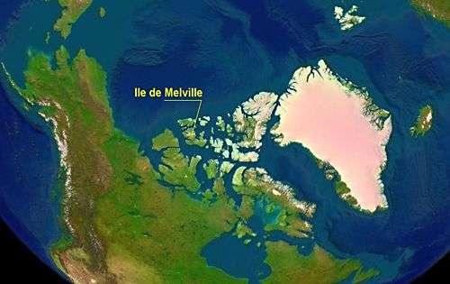 Ile de Melville (photo satellite). Crédit Nasa