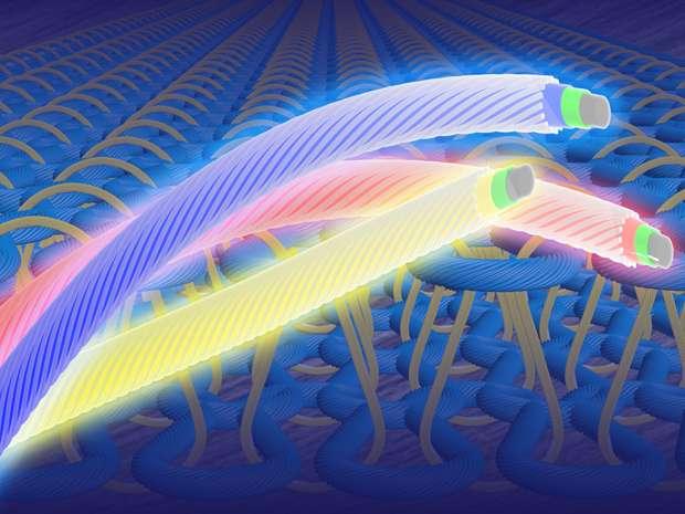 Des chercheurs ont réussi à fabriquer une fibre lumineuse souple et ultrafine susceptible d'être incorporée dans du tissu. Même si plusieurs obstacles techniques demeurent, cette innovation pourrait déboucher sur la création de vêtements lumineux. © Zhitao Zhang, Fudan University