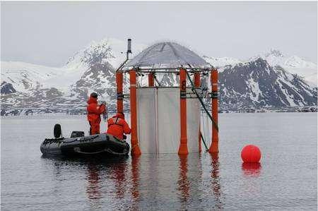 L'un des dix mésocosmes installés dans le fjord Gullmar, en Suède. Ces mésocosmes sont les plus grands jamais réalisés. © Geomar