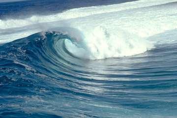 Les océans absorbent une grande partie du CO2 de l'atmosphère, grâce à la pompe à carbone. © DR