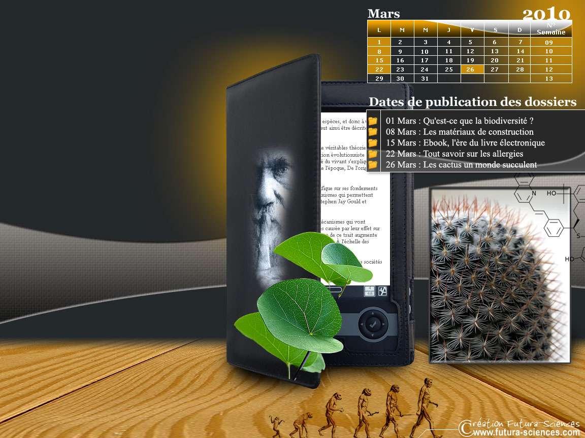 Cactus, ebook et allergies !