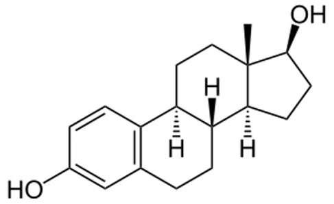 L'œstradiol, un œstrogène naturel, dont on voit la représentation moléculaire, est synthétisé à partir de la testostérone, l'hormone sexuelle mâle. Cette molécule joue différents rôles dans l'organisme, notamment dans le développement et la croissance des caractères sexuels secondaires chez la femme. © NEUROtiker, Wikipédia, DP