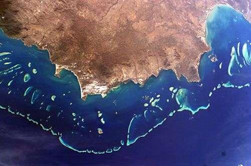La Grande Barrière de Corail au large de l'Australie, vue depuis la Station Spatiale Internationale. Crédit Nasa