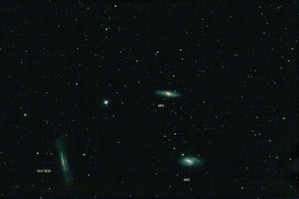 """Le trio du Lion, les galaxies M 65, M 66 et NGC 3628. Crédit """"Chamois"""", son pseudo sur le forum."""