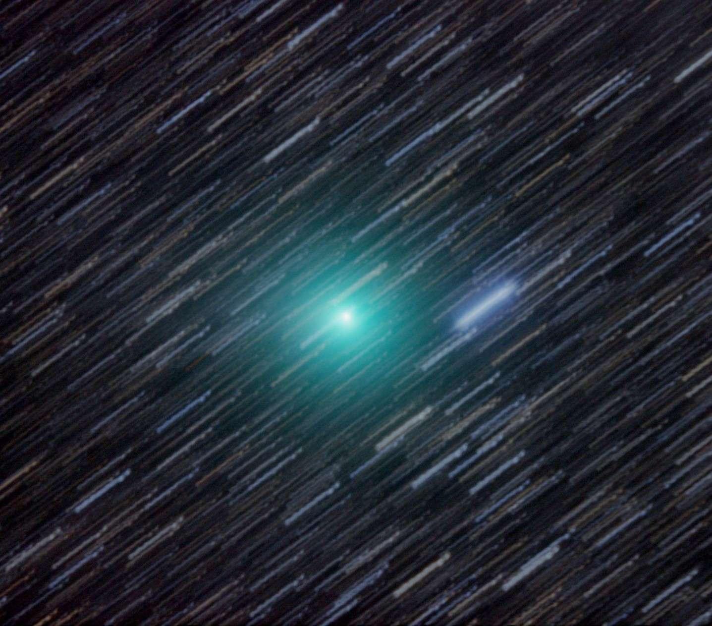 La comète Lemmon photographiée le 23 janvier dernier avec un télescope de 41 cm de diamètre installé en Nouvelle-Zélande. La couleur verte de la comète est produite par la fluorescence du cyanogène (C2N2) et du carbone diatomique (C2). Le télescope a suivi le déplacement de la comète (alors de magnitude 7) pendant les 20 minutes de pose, ce qui explique pourquoi les étoiles ont laissé des traits. © John Drummond