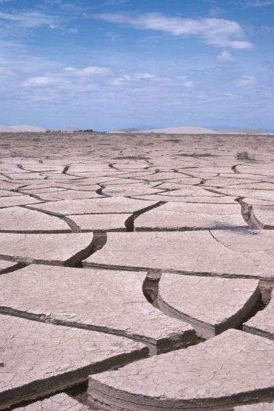 Fentes de dessiccation dans un fond de lagune au Pérou après les inondations de 1983 dues à un épisode El Niño extrême. Ces épisodes pourraient être plus fréquents à l'avenir, avec environ un par décennie. © L. Emperaire, IRD