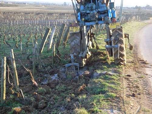 Griffage du sol dans une exploitation viticole. © K-Vins.com CC by 2.0