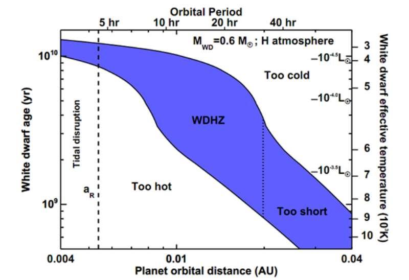Le diagramme de la zone d'habitabilité en bleu pour une naine blanche. Horizontalement, la distance en unités astronomique UA et la période orbitale d'un exoplanète en heure. La ligne en tirets à gauche indique la limite de Roche. Plus à gauche, la planète est détruite par les forces de marée. L'autre ligne à droite indique que la planète ne restera pas suffisamment longtemps habitable (