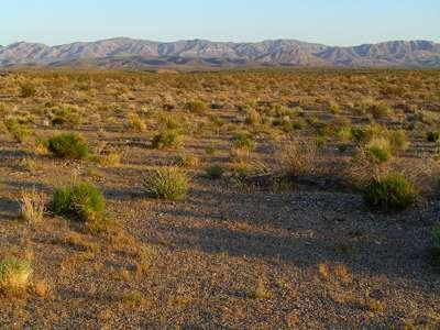 Le désert du Mojave, autour de La Vegas, où le phénomène du dégazage de l'azote des sols a été étudié. © Université de Cornell