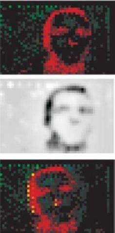 Ce que voit l'oeil bionique.De haut en bas : image statique brute, image traitée, figure en mouvement.