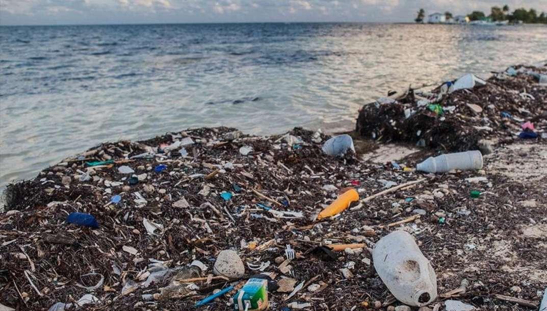 L'Océan en danger face à l'exploitation et la pollution humaine