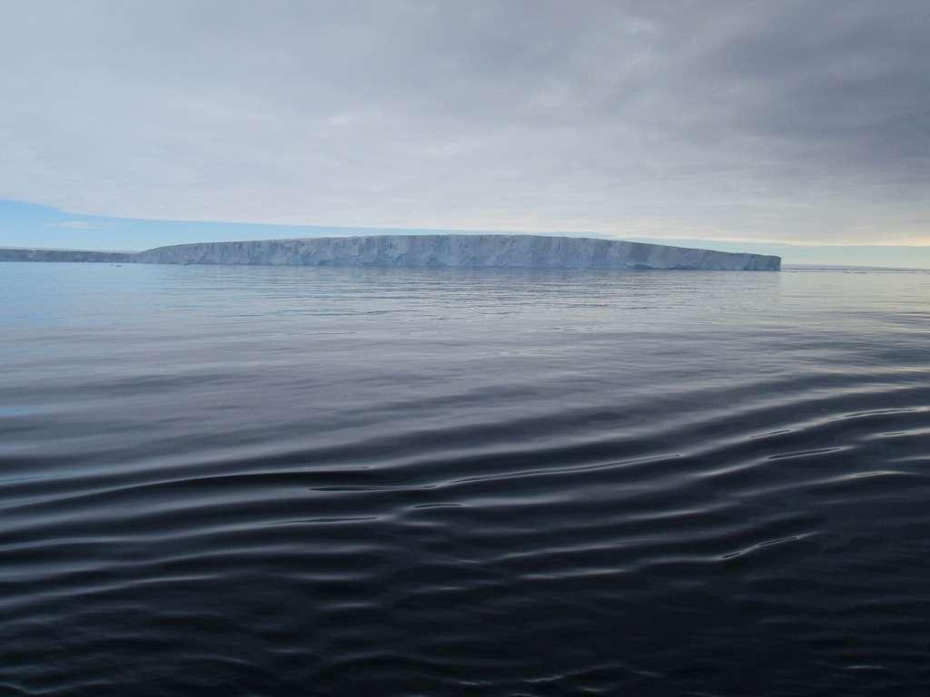 Le glacier Pine Island s'étend sur la mer, sous forme de plateforme glaciaire, dans la mer d'Amundsen. Il couvre près de 175.000 km2 et représente 10 % de la partie ouest de la calotte polaire Antarctique. © Pierre Dutrieux, British Antarctic Survey