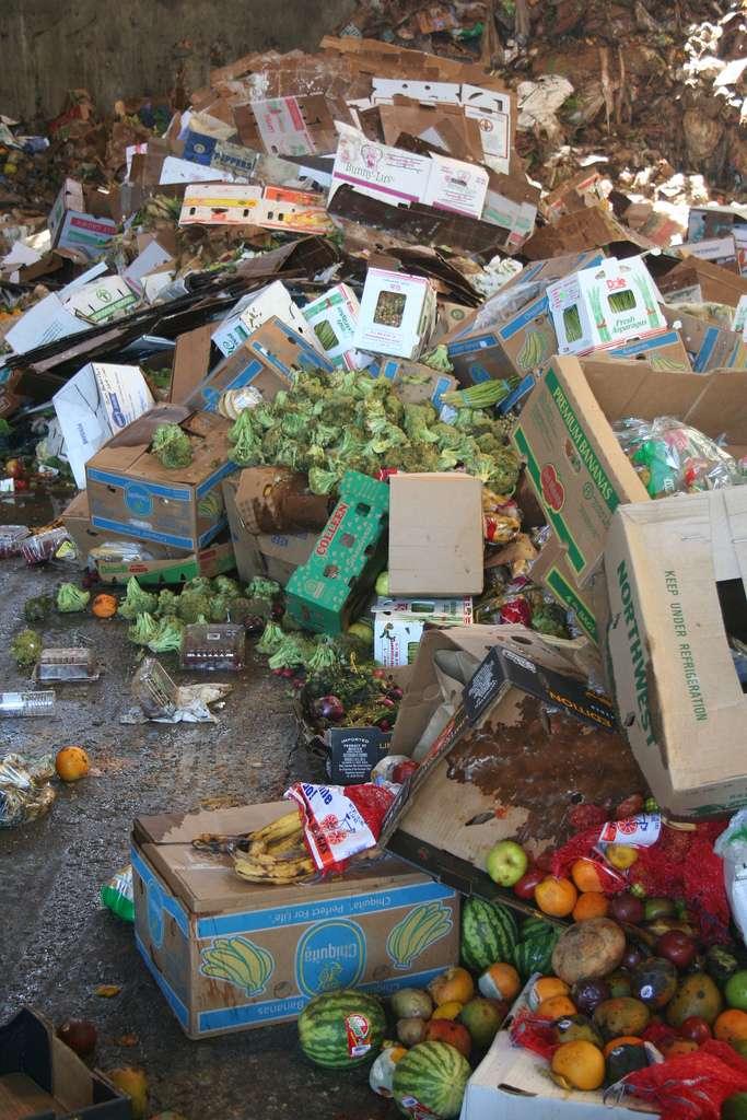 Selon l'Ademe, 5,3 millions de tonnes de denrées alimentaires seraient jetées chaque année en France. La majeur partie d'entre elles pourrait être compostée. © jbloom, Flickr, cc by nc sa 2.0