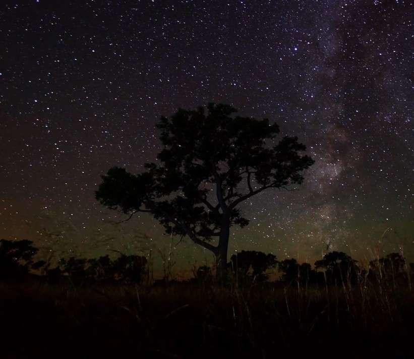 La Voie lactée dans le ciel du Dakota du Sud. © Randy Halverson