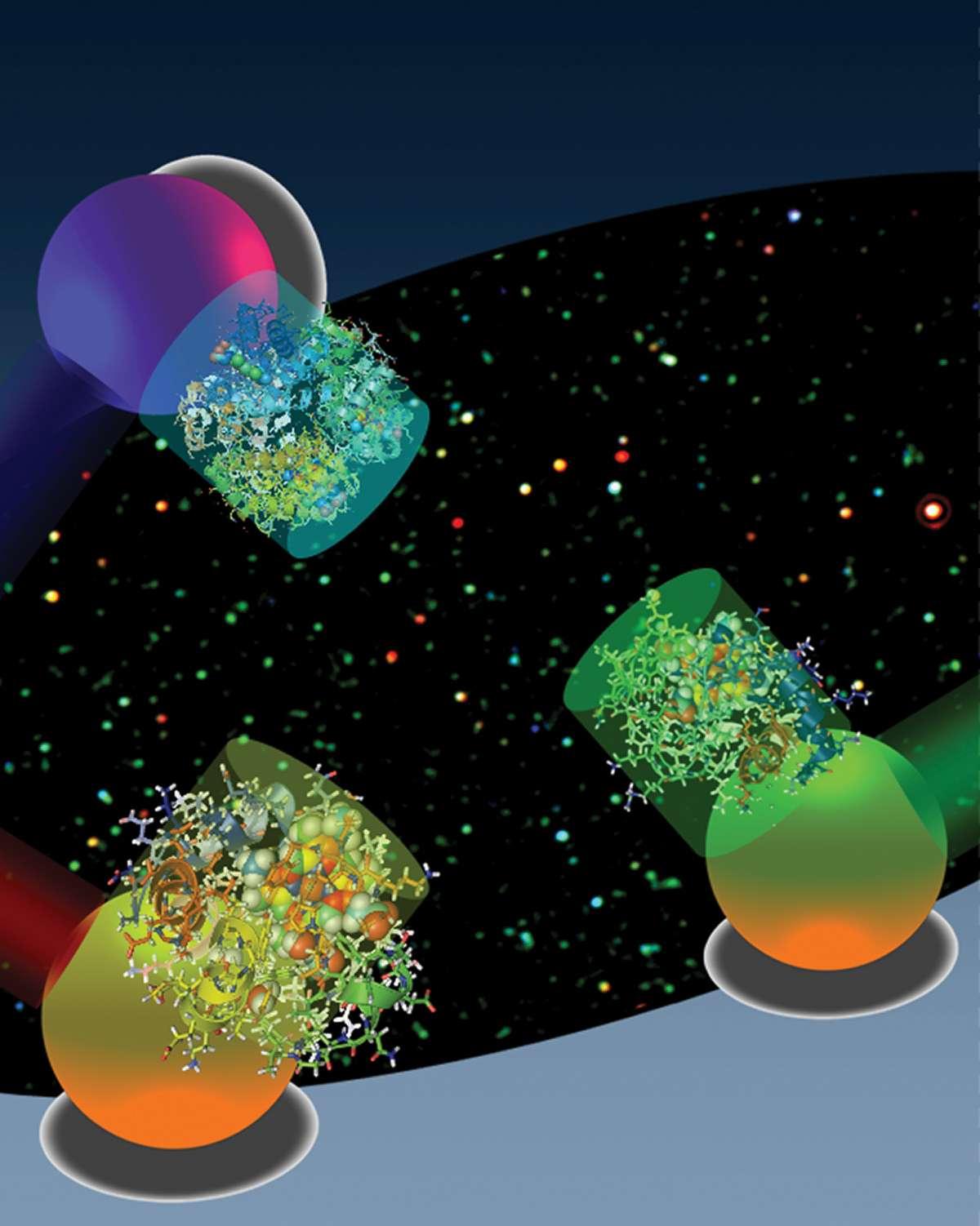 En fonction de la lumière absorbée par les nanoparticules d'or sphériques couplées à des molécules, on peut tracer le comportement de ces dernières. Crédit : Gang Logan Liu et Luke Lee, UC Berkeley