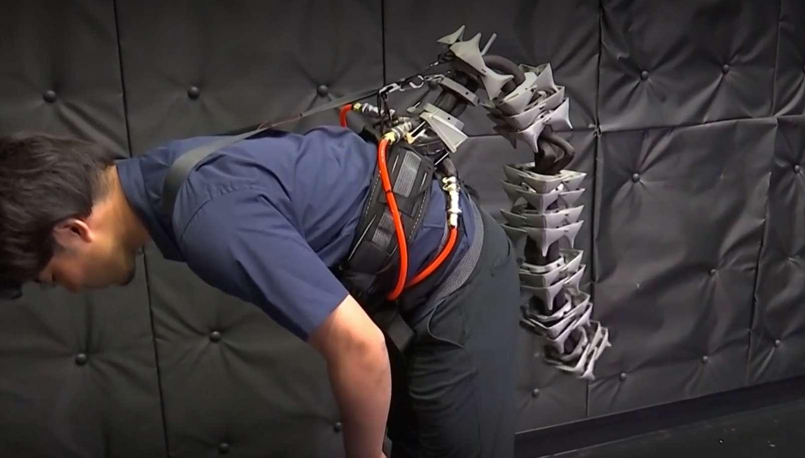 Cette queue robotisée inspirée de l'hippocampe aide les personnes âgées à garder leur équilibre. © Reuters, YouTube