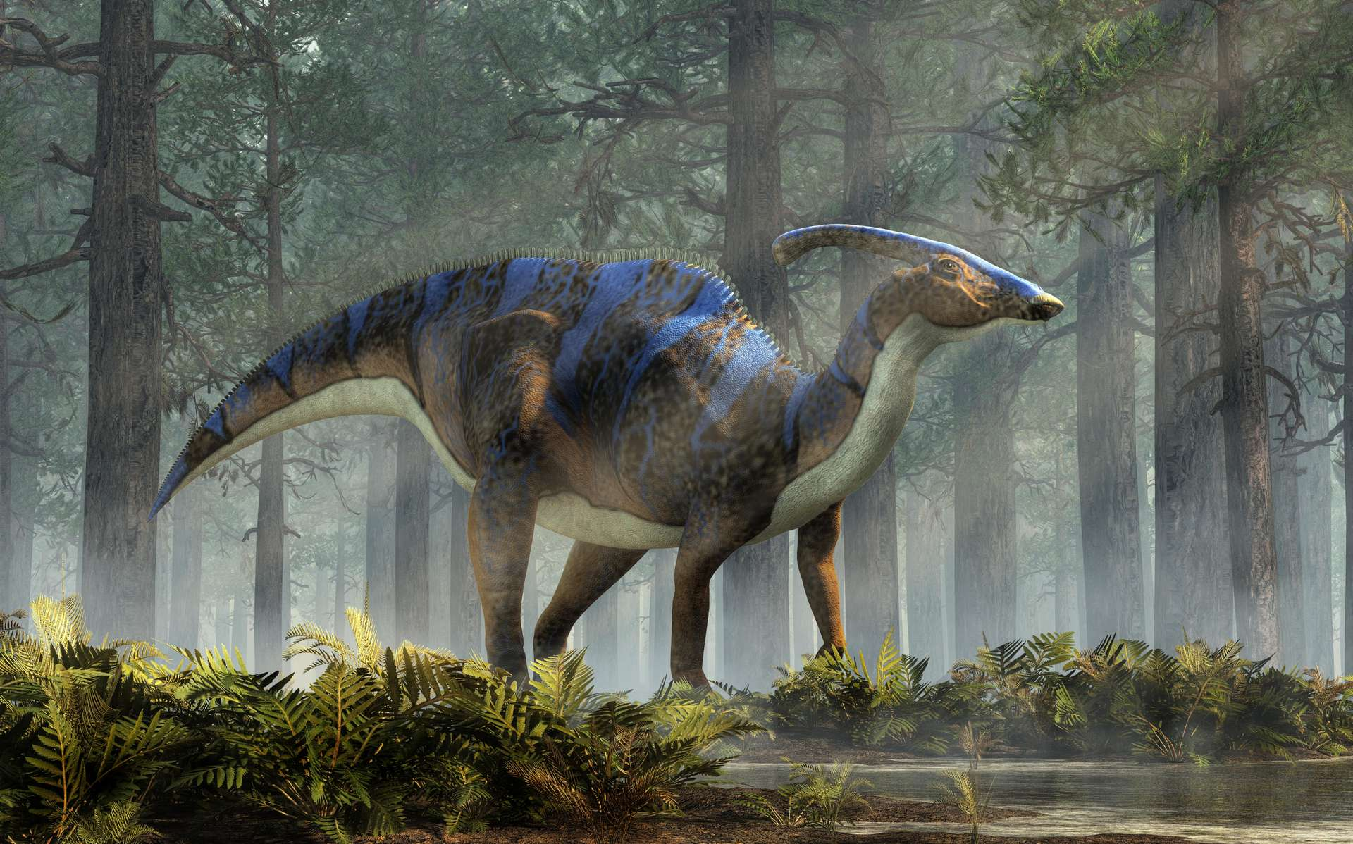 Le Parasaurolophus pesait environ 2,5 tonnes. © Daniel, Adobe Stock