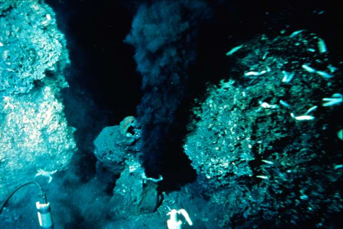 La couleur du fluide hydrothermal émis par les fumeurs noirs est principalement liée à sa forte teneur en fer et en manganèse. © USGS, Wikimedia Commons, DP