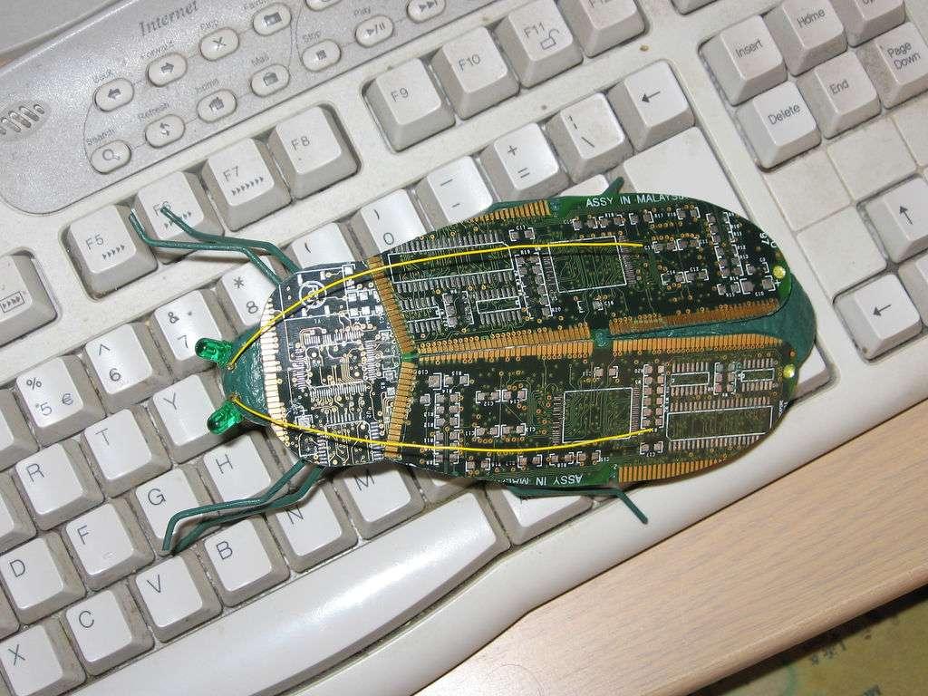 Les bugs, bientôt un mauvais souvenir ? © (cc) Hil