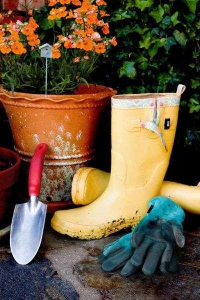 Exposition, choix des légumes, outils... tout savoir pour réussir son potager urbain ! © Gordon Swanson