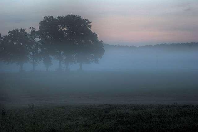 Écharpe de brume à l'aurore. © 1suisse CC by-sa 2.0