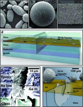 Les capsules vues au microscope électronique à balayage mesurent 200 microns (photo a) ou 10 (b). On note que les plus petites sont les plus rondes. En c, vue des capsules déposées (au sein d'une résine) sur le conducteur en or, que l'on voit sur le schéma d (Au). Il est inclus entre un isolant (Dielectric et du verre (Glass. En e et f, microphotographie et schéma du principe : au niveau de la fissure, les capsules libèrent leur contenu de mélange de métal liquide conducteur (Ga-In). © Benjamin J. Blaiszik et al./Advanced Materials