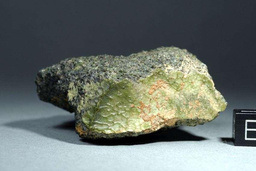 Voici le plus gros morceau (100 gr) de la météorite NWA 7325. Les 35 fragments ramassés en 2012 dans le désert marocain présentent la même composition minéralogique que la surface de la planète Mercure. © Stefan Ralew, sr-meteorites.de