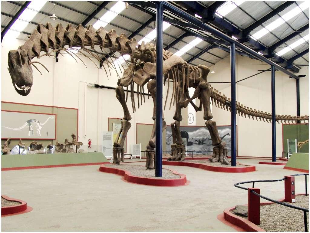 Cette reconstitution du squelette d'un Argentinosaurus huinculensis peut être observée au Museo Carmen Funes de Neuquén, en Argentine. Elle mesure 39,7 m de long, pour une hauteur de 7,3 m au-dessus de l'épaule. © Sellers et al., 2013, Plos One