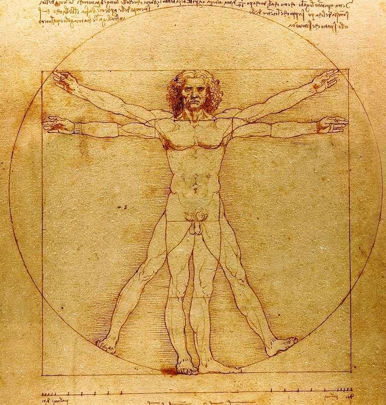 Léonard de Vinci représente souvent l'archétype de l'unité de la science et de l'art. Il a étudié les mathématiques avec Luca Pacioli. On pense qu'il est l'auteur des superbes représentations de polyèdres illustrant l'ouvrage De divina proportione (la divine proportion), que celui-ci a consacré au nombre d'or et à des éléments d'architecture s'inspirant des règles énoncées par Vitruve. Léonard sera d'ailleurs l'auteur d'un fameux dessin, intitulé Étude des proportions du corps humain selon Vitruve. Si Léonard lui-même n'était pas un mathématicien, son intérêt pour le sujet est évident, comme le prouve d'ailleurs une de ses pensées notées dans ses carnets : « Aucune certitude n'est possible si l'on ne peut y appliquer une des sciences mathématiques ou qui ne soit unie aux mathématiques ». © Luc Viatour