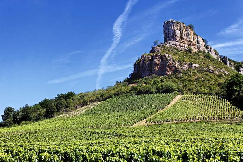 Les climats de Bourgogne classés au patrimoine mondial de l'Unesco. © Prochasson Frédéric, Shutterstock.com