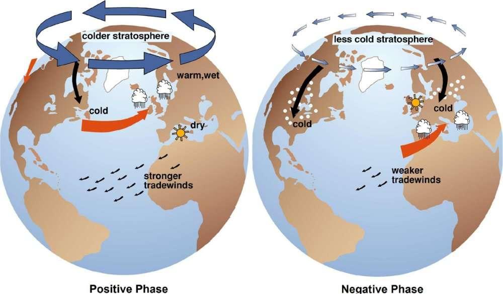L'oscillation arctique d'un extrême à l'autre. Quand l'OA est positive (positive phase), la stratosphère est plus froide que d'habitude (colder atmosphere) au-dessus du pôle Nord et les pressions au sol sont faibles. En Europe, le temps sera plus chaud et plus humide. Quand l'OA est négative (negative phase), la stratosphère polaire est moins froide (less cold stratosphere) et il fait plus froid sur l'Europe. © J. M. Wallace/University of Washington