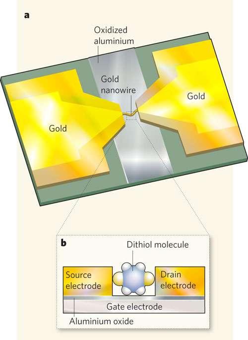 Un schéma du transistor constitué d'une molécule benzènique connectée à des contacts en or que les chercheurs ont réalisée. Crédit : Nature