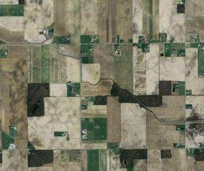 Les champs de maïs américains contiennent à 85 % des OGM. © Google Maps