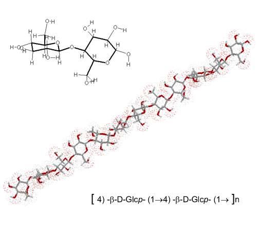 Structure de la cellulose, crédits DR.