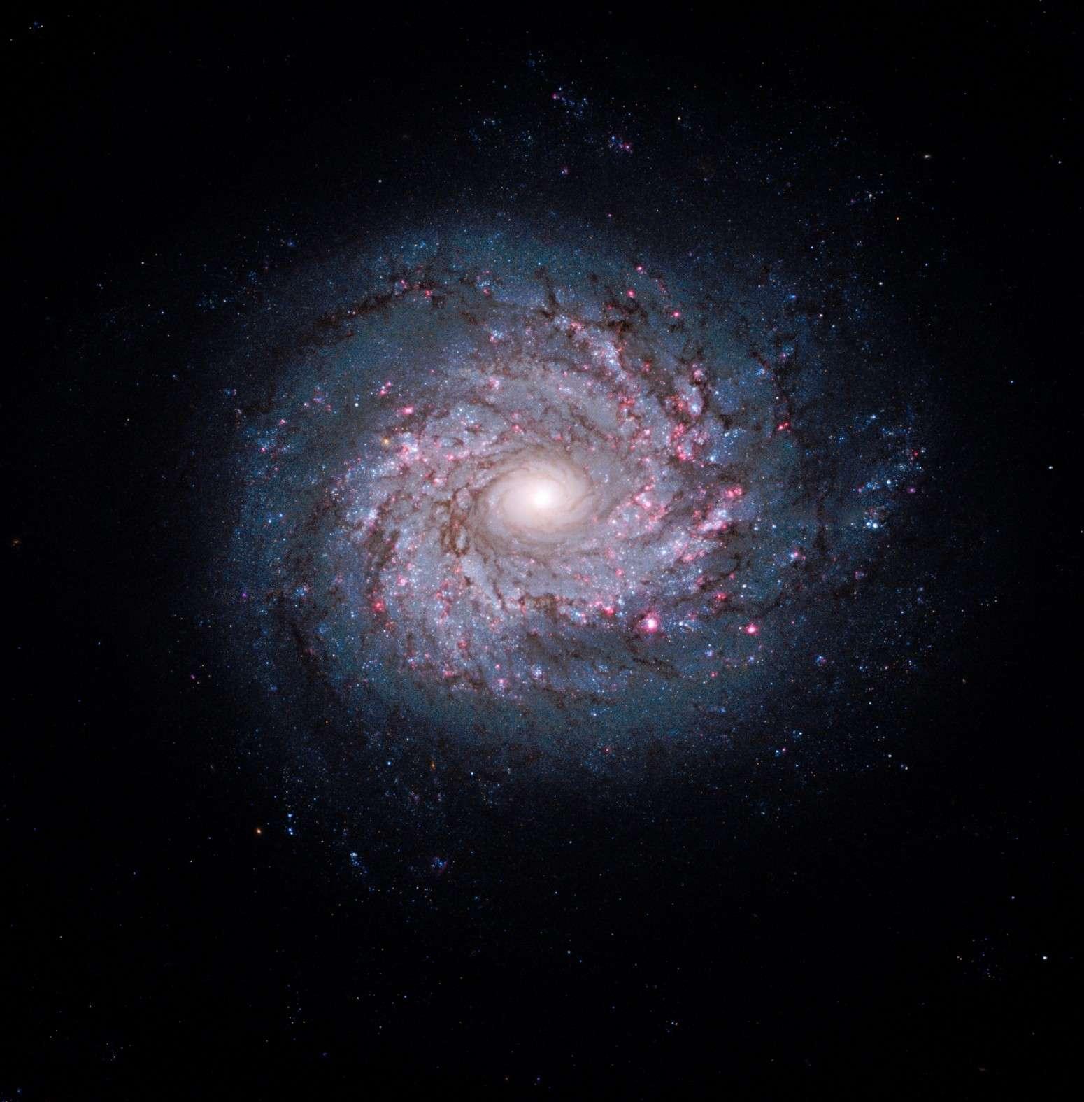 NGC 3982 photographiée par le télescope spatial Hubble. © Nasa/Esa/The Hubble Heritage Team (STScI/AURA)