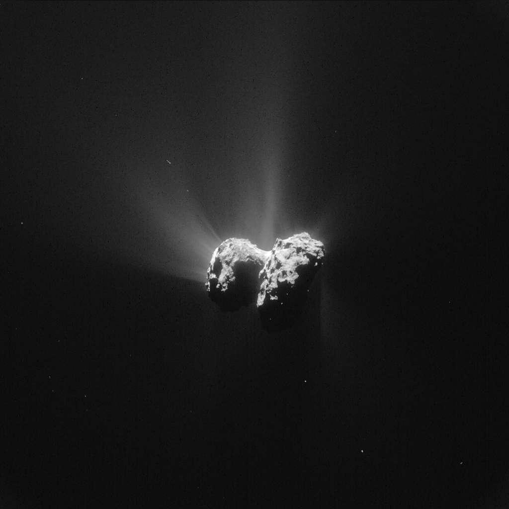 Vue d'ensemble du noyau de Tchouri photographié avec la caméra de navigation de Rosetta, le 15 juin 2015, à 207 km de distance. Les jets de gaz se multiplient à l'approche du périhélie, notamment dans la région dite du cou, entre les deux lobes et celle du plus petit des deux (à gauche) ici exposée au Soleil. © Esa, Rosetta, NavCam – CC BY-SA IGO 3.0