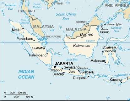 Le Cœur de Bornéo, qui compte 200.000 mètres carré de forêt équatoriale, est le nom donné à l'engagement officiel formulé par l'Indonésie, la Malaisie et le Sultanat de Brunei Darussalam