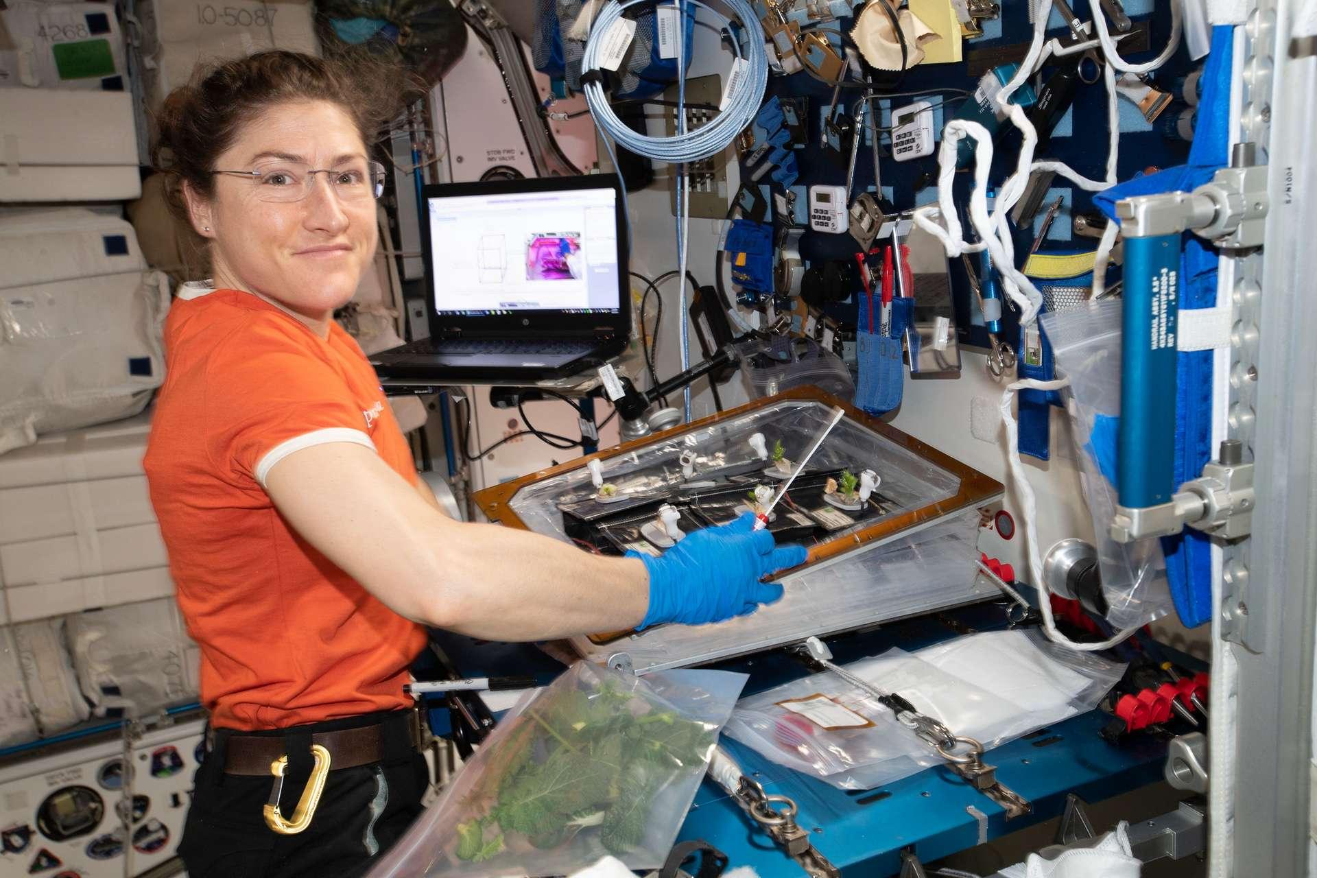 L'astronaute américaine Christina Koch a rejoint l'ISS le 14 mars 2019 pour une mission qui vient d'être prolongée à février 2020, soit environ onze mois. © Nasa