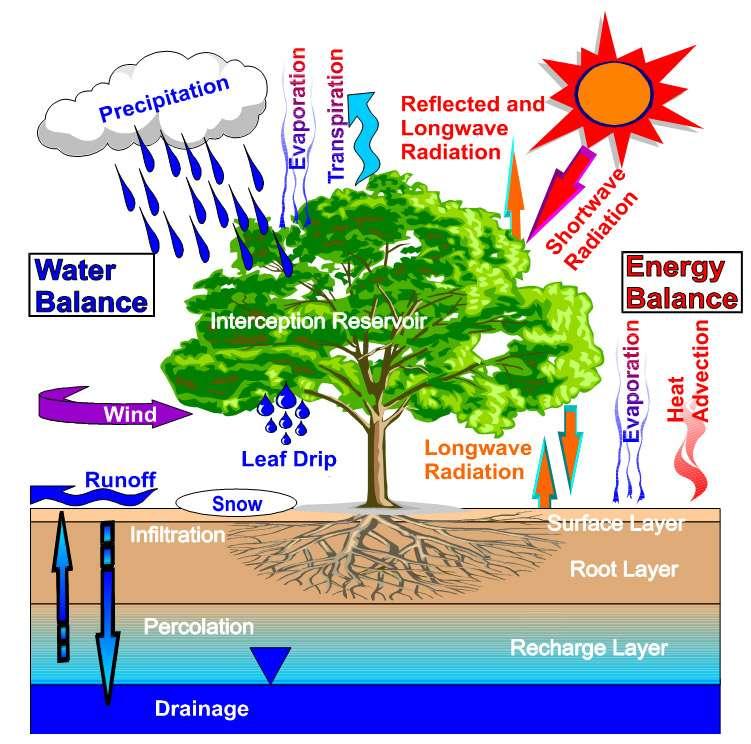 Shéma du cycle de l'eau que doit étudier Smos. Crédit P. Houser