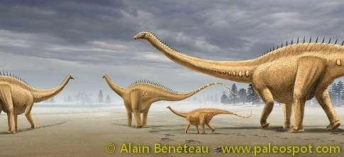 Reconstitution d'un troupeau de Diplodocus, à partir des empreintes de Courtedoux. © Alain Bénéteau