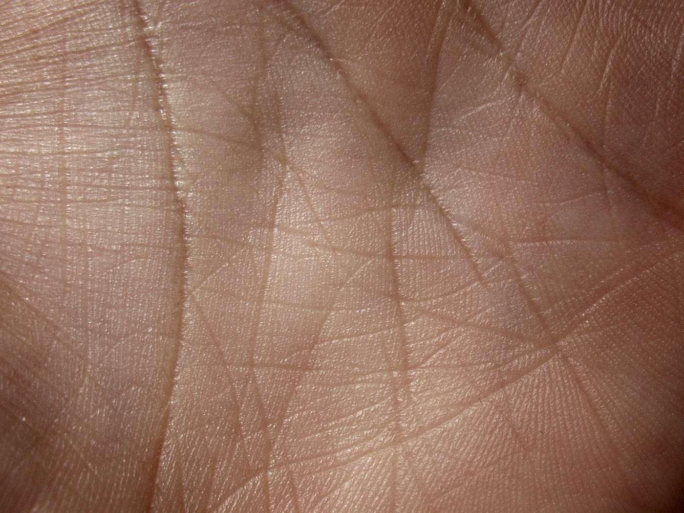 Une peau artificielle arrivera-t-elle un jour à imiter la peau humaine ? Le chemin est encore long mais des avancées importantes ont eu lieu. © Caleb Kimbrough, Flickr, CC by 2.0