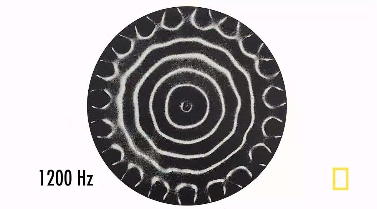 En vidéo : sculpter la matière avec du son grâce à la cymatique