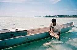 Un canoë de roche de corail rapporte 5 $ US.Mais les poissons y perdent leur habitat.© Jessica Haapkilä, Paris