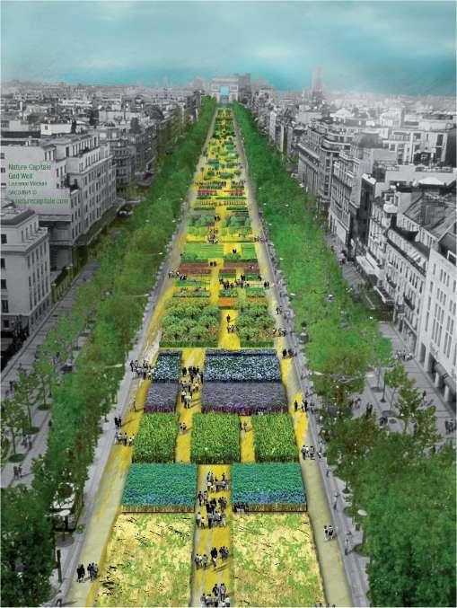 L'avenue des Champs-Elysées telle qu'elle sera entre samedi 22 mai au soir et lundi 24 mai. L'endroit, ainsi, redeviendra momentanément champêtre, comme il l'était avant 1616 et comme il le fut brièvement en juin 1990 pour La Grande Moisson des Champs-Elysées. © Nature Capitale
