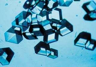 L'insuline est une hormone hypoglycémiante. Ici, elle est sous forme de cristaux. © Nasa, Wikimedia, domaine public