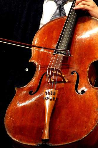 Ce violoncelliste peut poursuivre son art sereinement. © -bartimaeus-/ Flickr - Licence Creative Common (by-nc-sa 2.0)