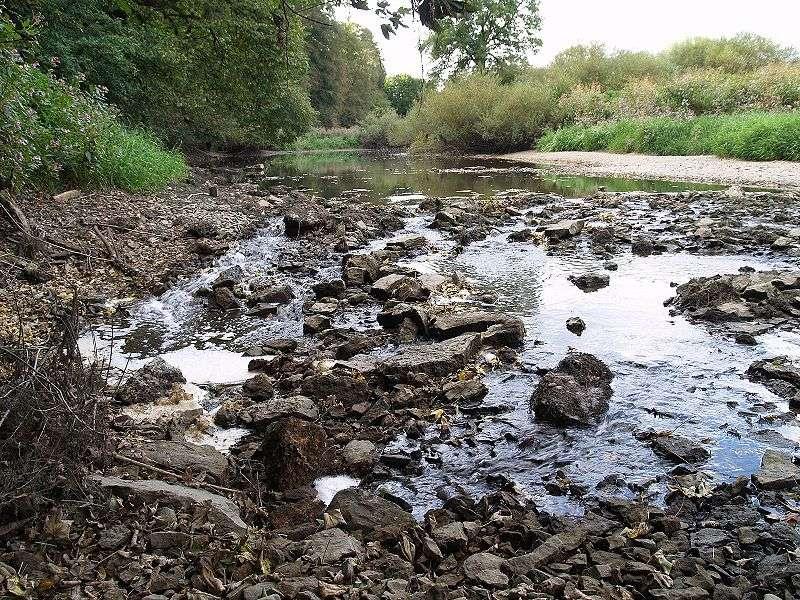 En cas d'étiage sévère, certains cours d'eau peuvent cesser de s'écouler, entraînant ainsi de nombreux problèmes écologiques. Les périodes de tarissement peuvent être causées par des sécheresses fortes et prolongées ou par un pompage excessif des eaux, par exemple pour l'irrigation. © Kreuzschnabel, Wikimedia common, CC by-sa 3.0